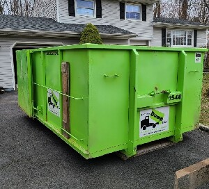 Clean Bin There Dump That Dumpster Rental